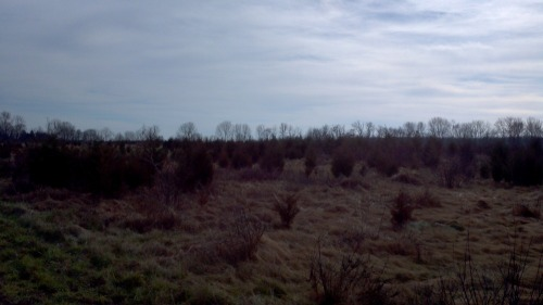 2011-11-27_11-27-12_567