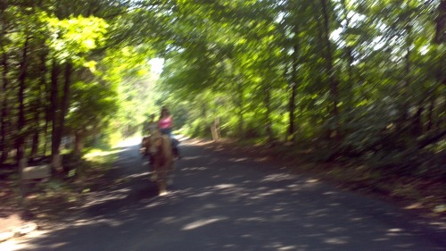 2012-07-01_10-55-22_177