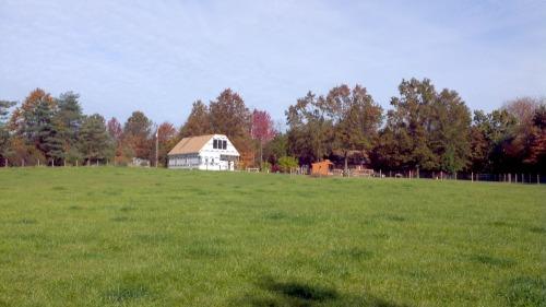 2012-10-20_10-44-12_765