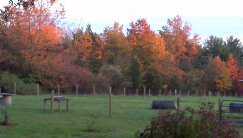 2012-10-20_18-02-41_184