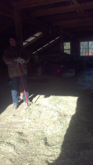 clean up loose hay