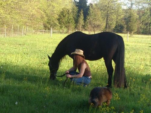 Photo Shoot at the farm