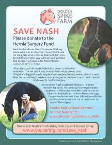 Save Nash Flyer_v3 p2