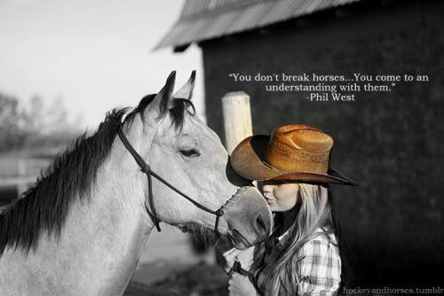 You don't break horses