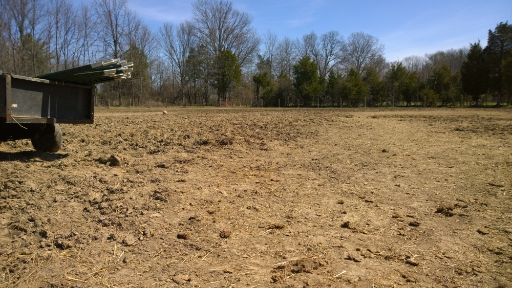 Pasture renovation and Paddock Paradise in one foul swoop (1/6)