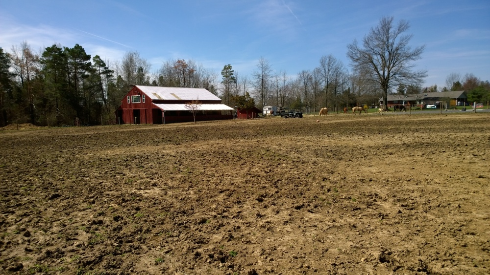 Pasture renovation and Paddock Paradise in one foul swoop (3/6)
